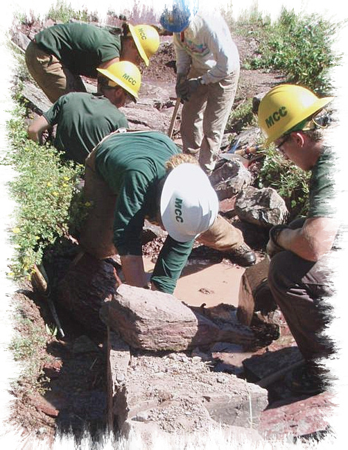 conservation corps adult